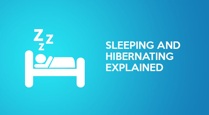 The Difference Between PC/Laptop 'Sleep' (Standby) And 'Hibernate' Explained.